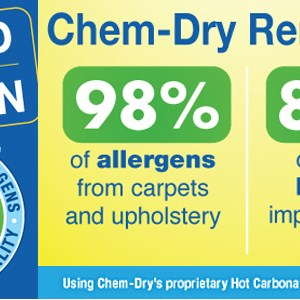 Chem-dry - Wrentham Logo