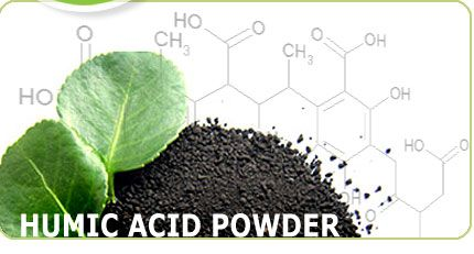 Organic Humic Acid Powder High Grade (90%+)  1 Ton