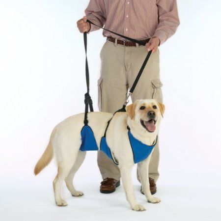 The Guardian Gear 4 in 1 lift & lead for dogs XXXL