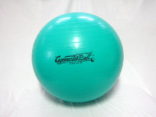 Gymnastik therapy/exercise ball