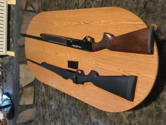 Long Guns For Sale Albany Georgia Firearms For Sale Classified Ads
