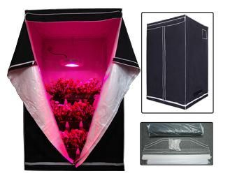 4x4x6.5 ft Plants Hydroponic Grow Tent