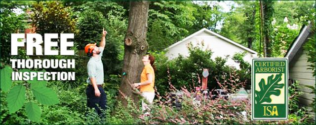Gardening Landscaping Service Usa Service Listings Free
