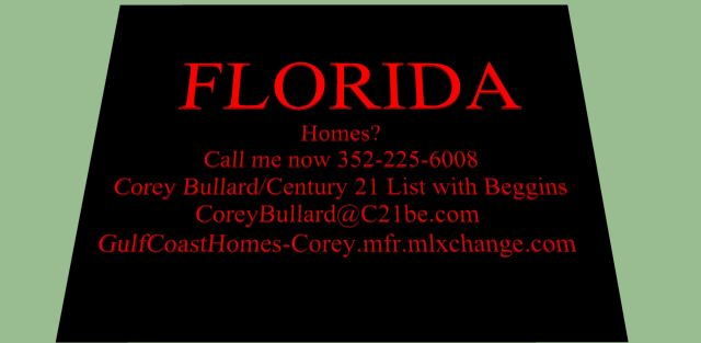 Your connection to Florida Real Estate.