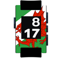Wales Flag Matte Pebble Watch Wrap and Screen Protector