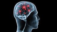 How Addiction Hijacks the Brain