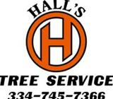 Tiger Tree Experts ~ Hall's Tree Service