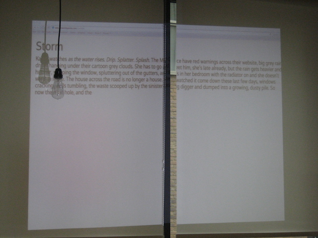 Sarah's words projected on the blinds