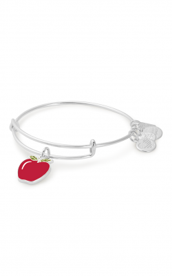 Apple Charm Bangle | Blessings in a Backpack product image