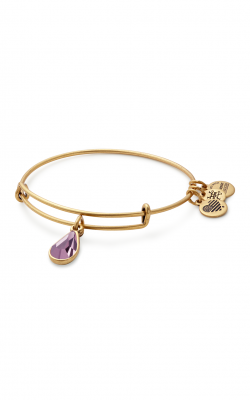 June Birth Month Charm Bangle With Swarovski Crystal product image