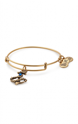 Anchor Charm Bangle product image