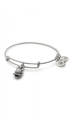 Ode To The Owl Charm Bangle | Roger Williams Park Zoo product image