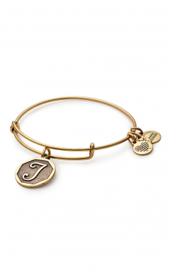 Initial T Charm Bangle product image