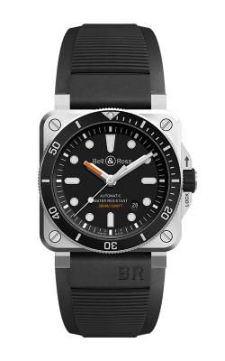 BR 03-92 Diver's image