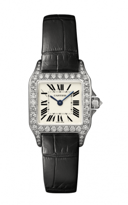 Cartier Santos Demoiselle Watch WF902007 product image