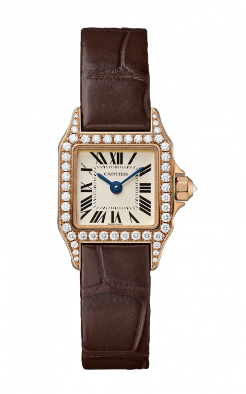 Cartier Santos Demoiselle Watch WF902006 product image