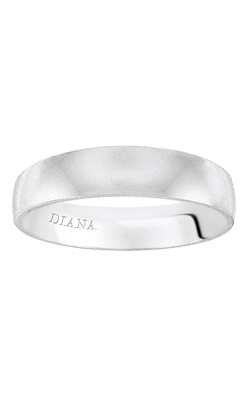 Diana Wedding Band 01-HTP063-L product image
