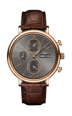 IWC Portofino Watch IW391021 product image