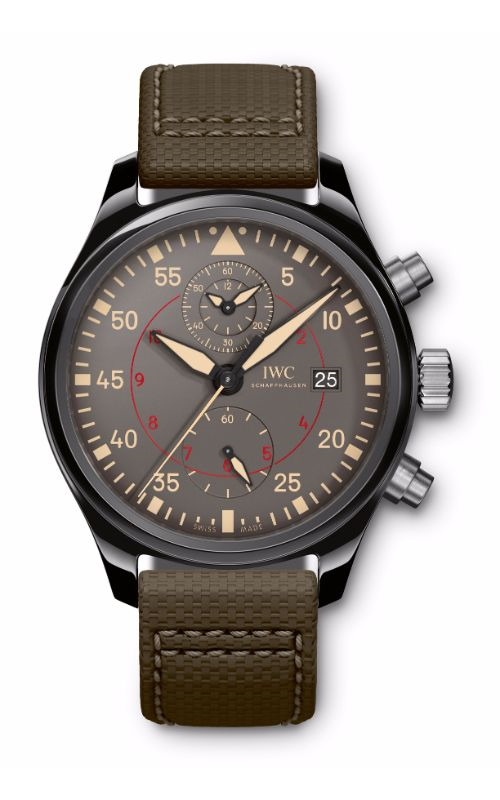 IWC Pilot's Watches Watch IW389002 product image