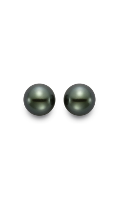 Mastoloni Basics Earrings EB08-8W product image