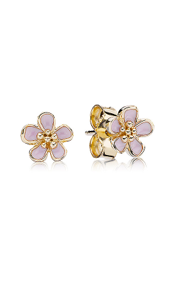 PANDORA Earrings 250318EN40 product image