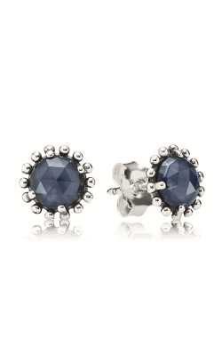 PANDORA Earrings 290561NBC product image