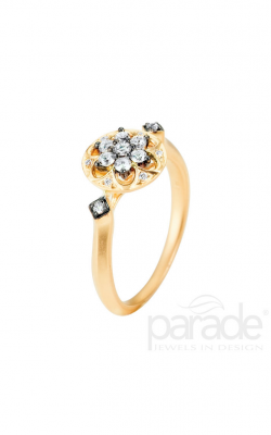 Parade Heritage Fashion ring BD2630A-YB product image
