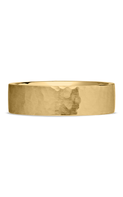 Ritani Men's Wedding Band 70005 product image