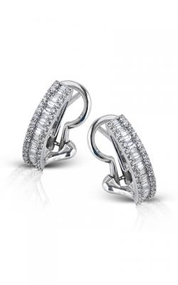 Zeghani Blindingly Beautiful Earring ZE351 product image