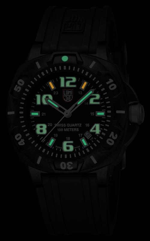 Luminox Sentry Series 0201.SL 3