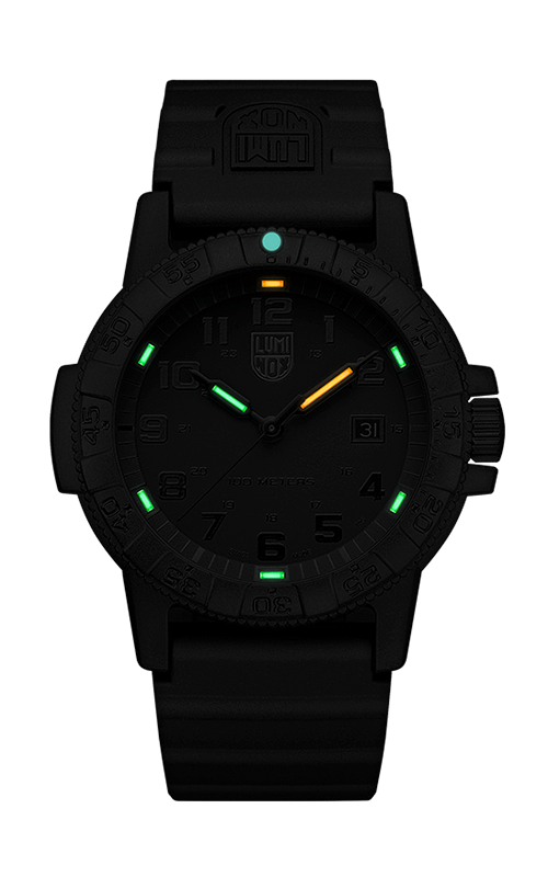 Luminox Leatherback Sea Turtle Giant 0321.BO.L 3