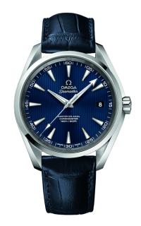 Omega Seamaster 231.13.42.21.03.001
