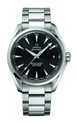 Omega Seamaster Watch 231.10.42.21.01.003 product image
