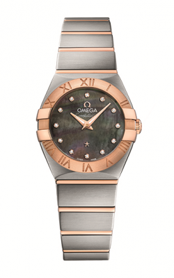 Omega Constellation	 123.20.24.60.57.005 product image