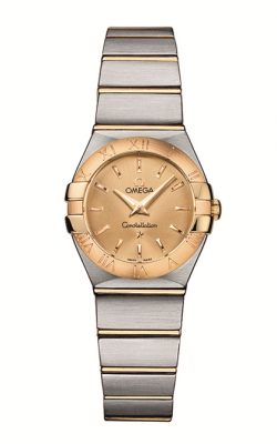 Omega Constellation	 123.20.24.60.08.001 product image