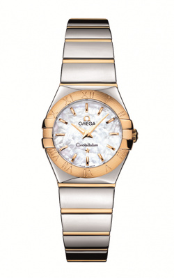 Omega Constellation	 123.20.24.60.05.004 product image