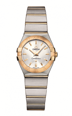 Omega Constellation	 123.20.24.60.02.002 product image