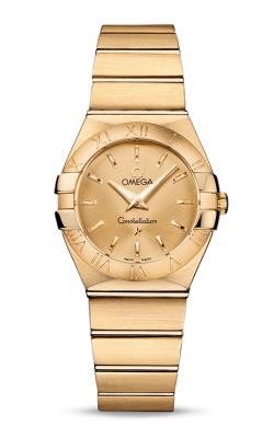 Omega Constellation 123.50.27.60.08.001 product image