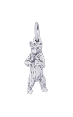 Rembrandt Charms Charms 0156 product image