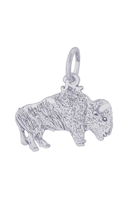 Rembrandt Charms Charms 0162 product image