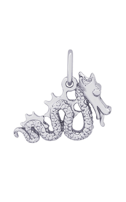 Rembrandt Charms Serpent Charm 1692 product image