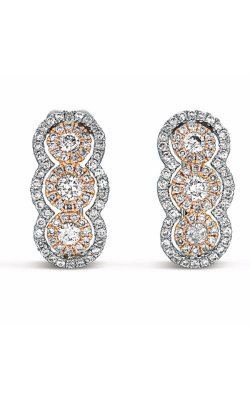 S Kashi & Sons Fashion Earrings E7767RW product image