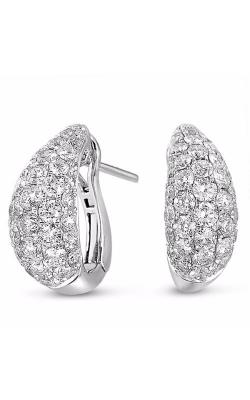 S Kashi & Sons Fashion Earrings E7816WG product image