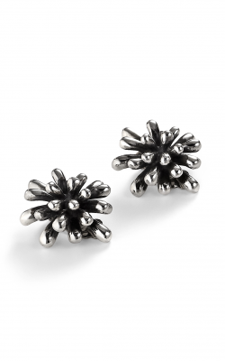 Zina Windows and Fireworks Earrings B487 product image