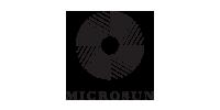 Microsun