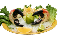 Colossal Stone Crabs