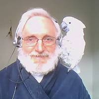 Video: How to Be Spiritual With a Bird on Your Shoulder
