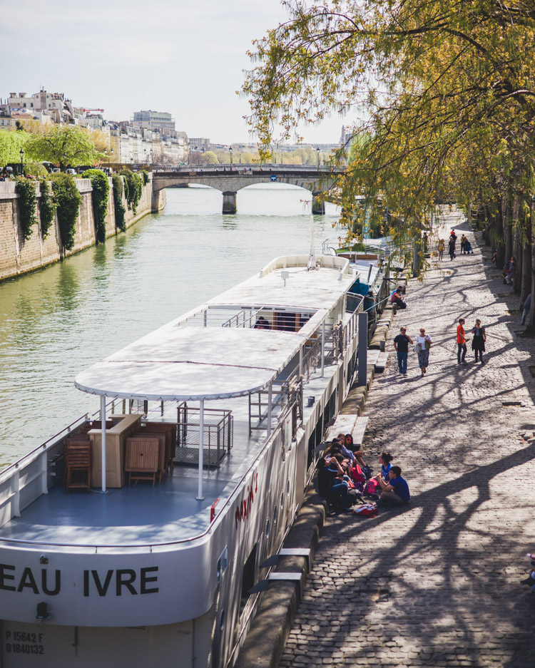 Paris Seine River