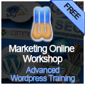 Advanced WordPress Training (blue)