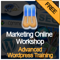 Advanced WordPress Training (orange)
